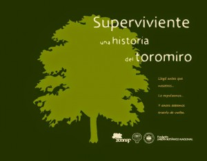 cuadernillo_toromiro_blanco_4