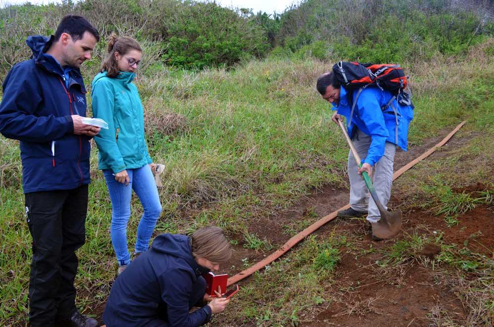 Evaluando las leguminosas del territorio insular