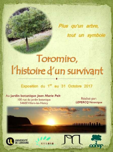 Toromiro, l'histoire d'un survivant
